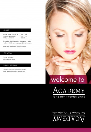 Collateral archives for Academy salon professionals